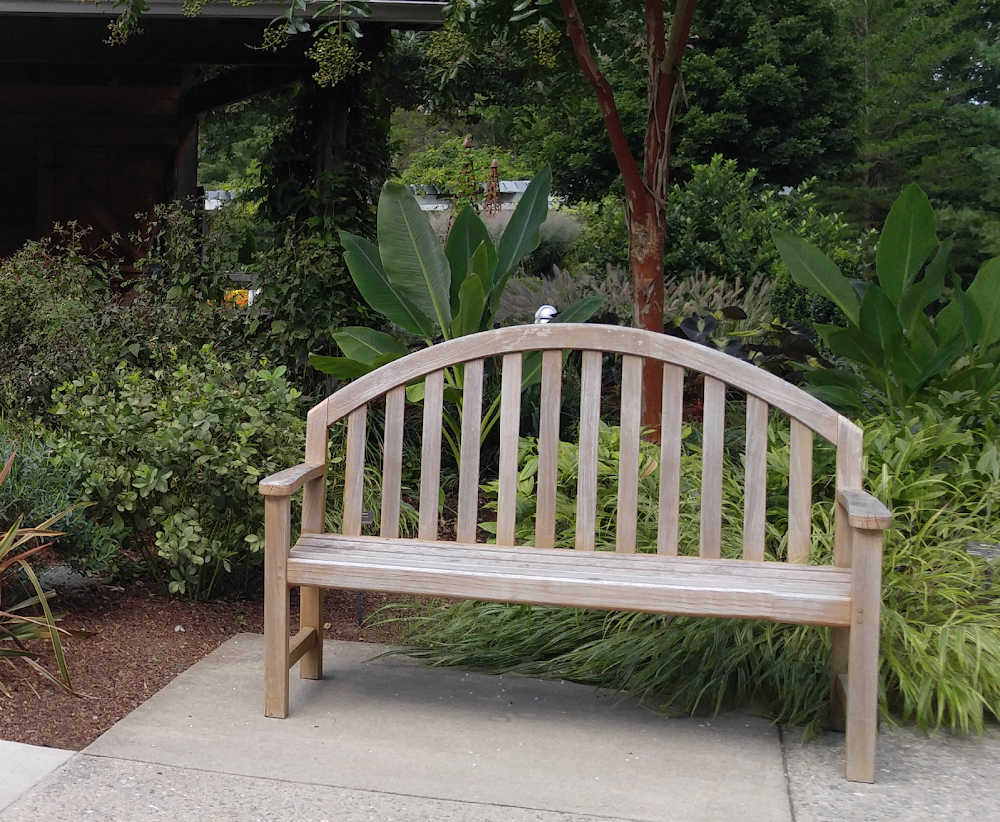 Garden bench in front of a lushly planted garden setting.