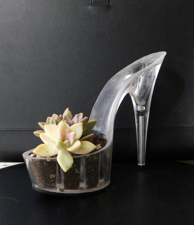 Recycled Succulent stiletto planter