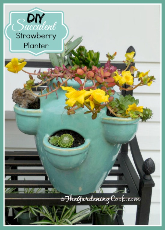 Strawberry pot turned into a succulent planter