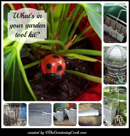 What's in your garden tool kit?