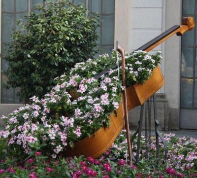 Double Bass used as a garden planter