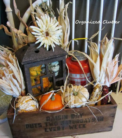 Indian Corn and Pumpkin vignette