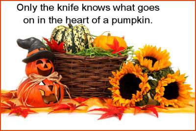 Funny Halloween saying.