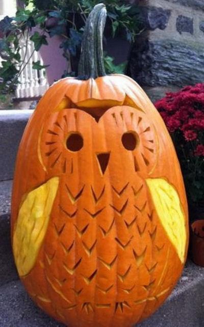 Carved Owl Pumpkin