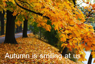 Autumn quote