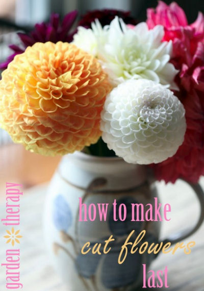 How to Make Cut Flowers Last