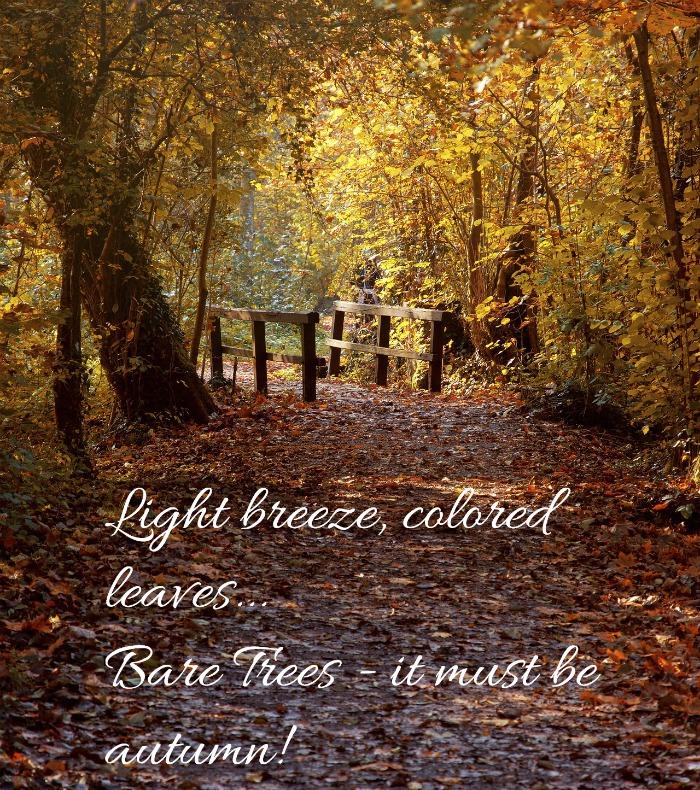 Autumn saying