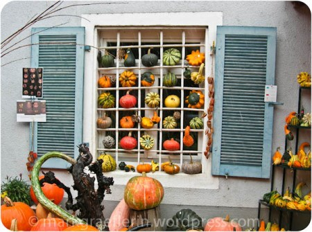 a window of pumpkin decor