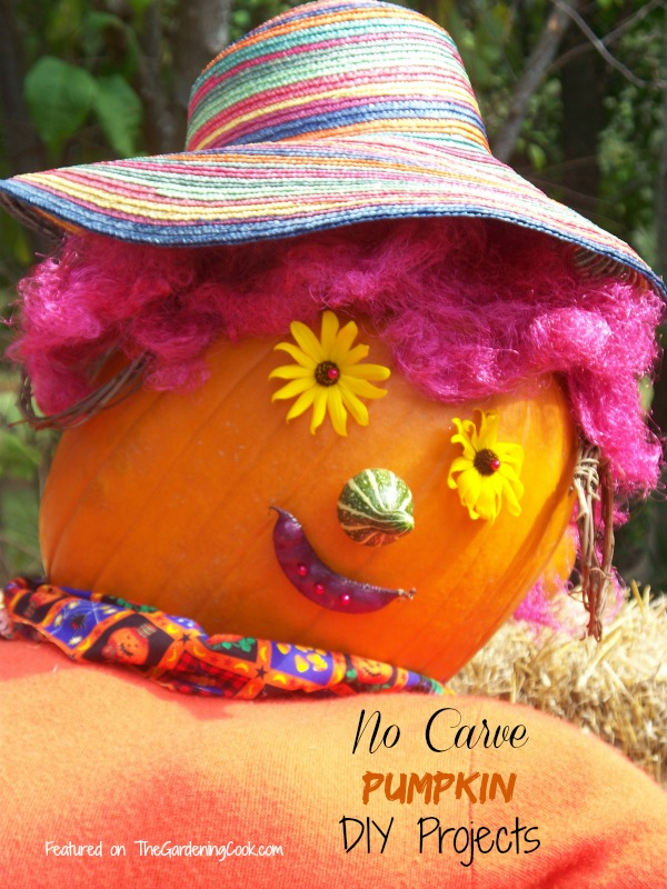 No carve pumpkin ideas.