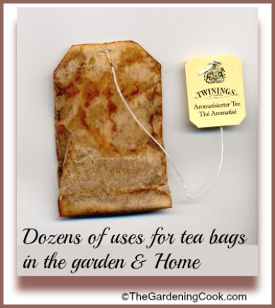 Dozens of uses of tea bags in the home and garden