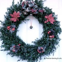 DIY Holiday Boxwood Wreath form