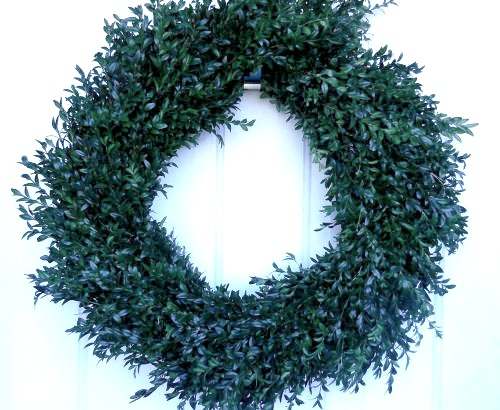 Finished boxwood wreath