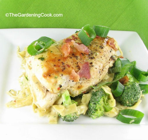 Slimmed Down Chicken and Broccoli Pasta