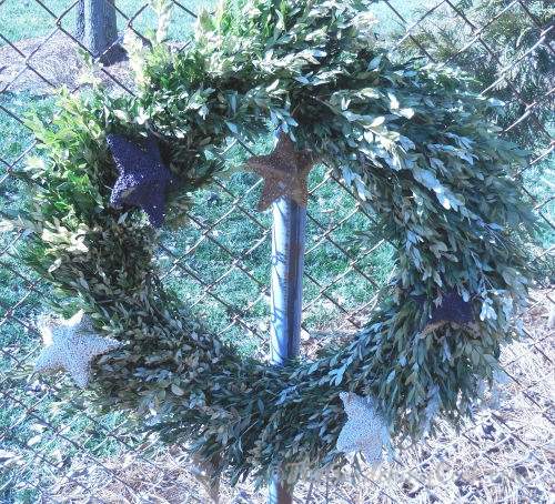 Boxwood wreath bird feeder