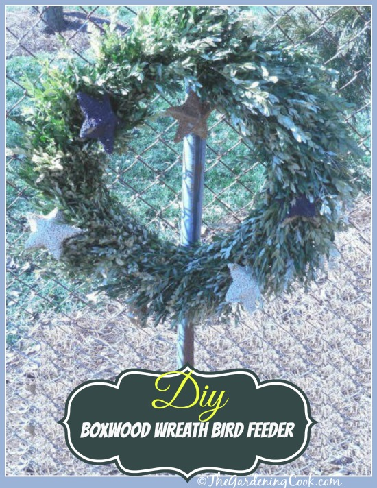 DIY Boxwood Wreath Bird Feeder