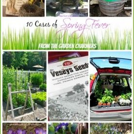 10 inspiring cases of spring fever from the Garden Charmers