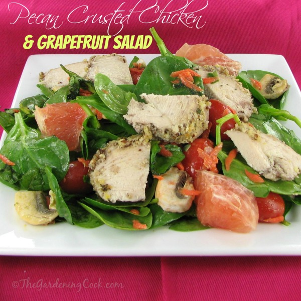 Pecan Crusted Chicken Spinach Salad with Fresh Grapefruit