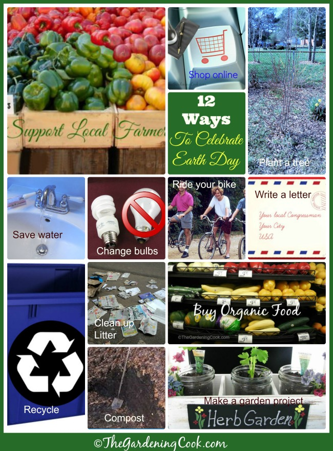 12 Easy ways to Celebrate Earth Day on April 22 and year round. #EarthDayProjects