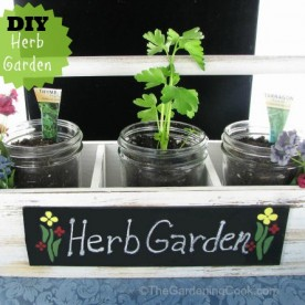 DIY Mason Jar Herb Planter in Famer's Market tray #EarthDayProjects