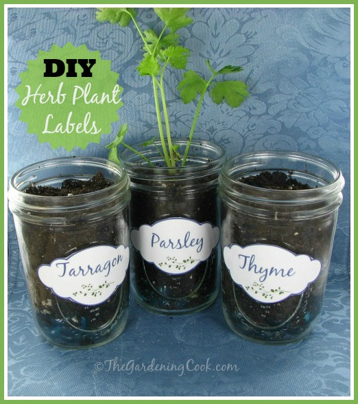 Free Herb Plant Labels For Mason Jars And Pots