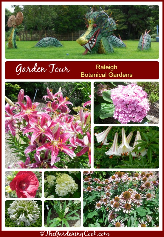 Garden Tour - Raleigh Botanical Gardens