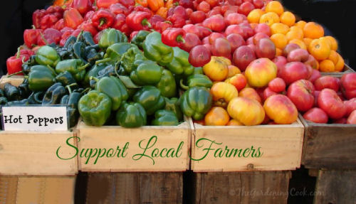 Support Local Farmers #EarthDayProjects