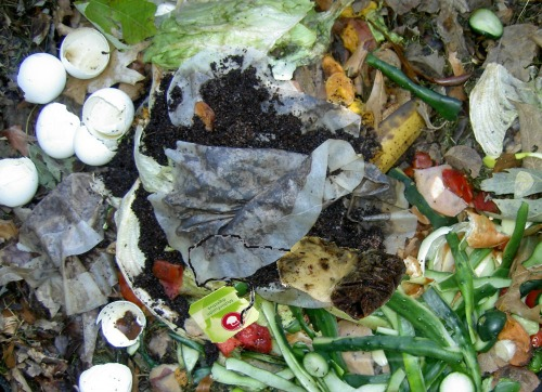 add tea bags to a compost pile