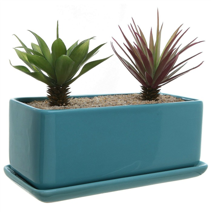 Minimalist succulent planter