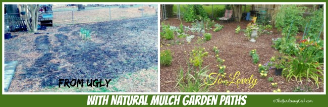 From an ugly eyesore to a lovely garden with natural mulch garden paths. Find out how to do them at https://thegardeningcook.com/natural-paths-garden-beds/