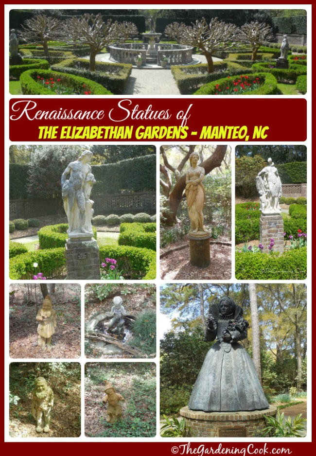 The Elizabethan Gardens in Manteo, NC have some wonderful renaissance statues that accent the gardens.  See more of these beauties at thegardeningcook.com/elizabethan-garden-statues-manteo-roanoke-island