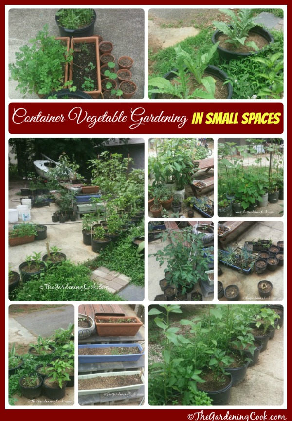 If you don't have space in your yard for a big vegetable garden, you can still grow veggies. Try container vegetable gardens. See how to do this at thegardeningcook.com/container-vegetable-gardening