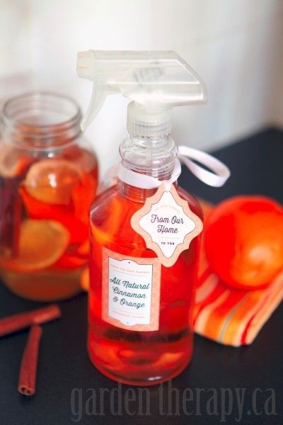 DIY cleaner with cinnamon, vinegar and orange.