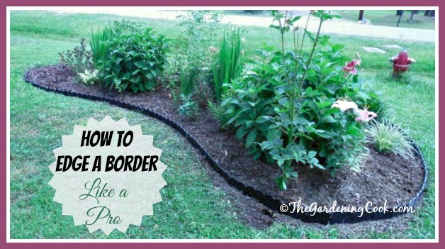 How to edge a border like a pro:  thegardeningcook.com/vigaro-edging-strips