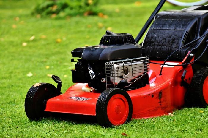 Regular yard maintenance helps to repel ticks