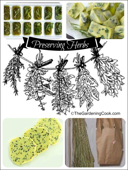 Freeze fresh herbs for cooking in the winter