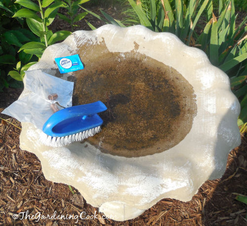 Alka Seltzer tablet, copper pipe and scrubbing brush are the tools to a clean bird bath