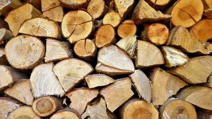How to kill ticks yard by keeping your wood piles tidy