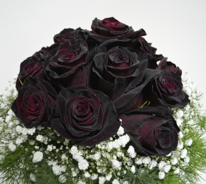 Black roses are either dyed or a very dark red, burgundy or maroon rose