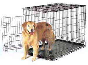 clean pet cages with hydrogen peroxide