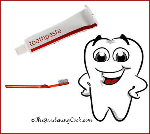 Make your own tooth paste with baking soda and hydrogen peroxide.