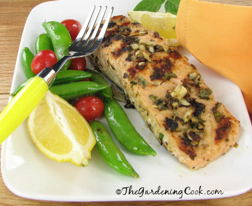 Grilled Salmon with herbs and a Dijon Mustard paste