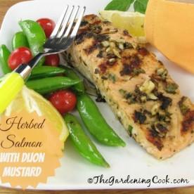 Herbed Salmon with Garlic Dijon Mustard paste - thegardningcook.com/