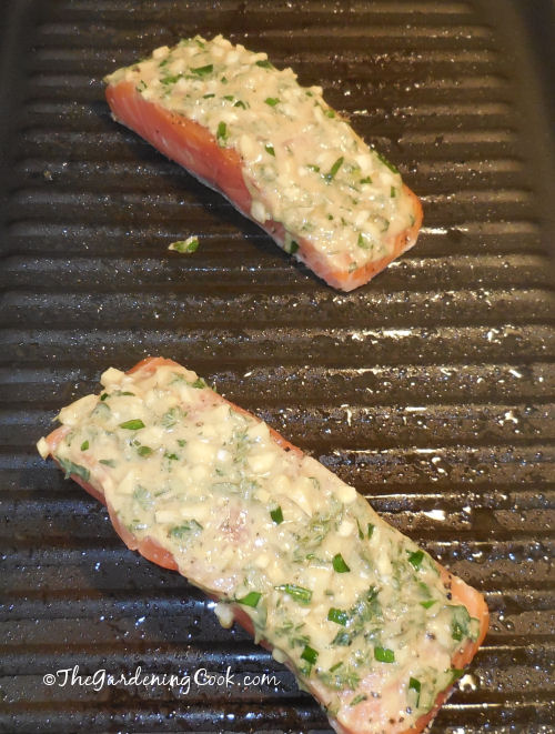 Grilling the salmon