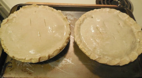 Chicken pies ready to bake.