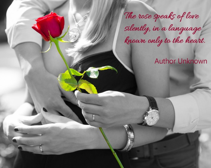 The rose speaks of love silently, in a language known only to the heart. (Author Unknown)