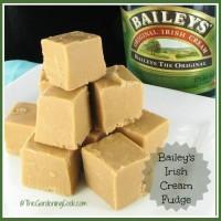 Bailey's Irish Cream & Coffee Fudge. To die for!