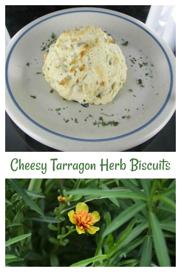 These cheesy herb biscuits are flavored with a great blend of tarragon, chives and parsley for a great taste.