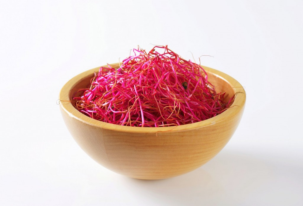 Organic beet seeds for sprouting.