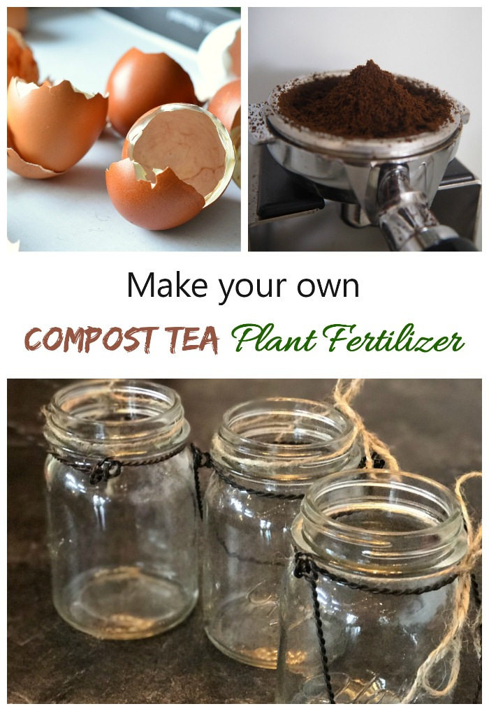 You can make compost tea with ground egg shells and coffee grounds mixed with water. It makes a great home made plant food.