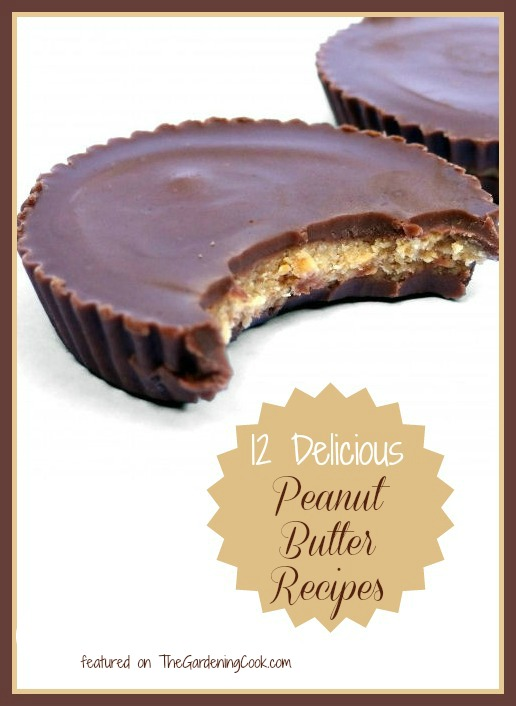 12 Delicious Peanut butter recipes